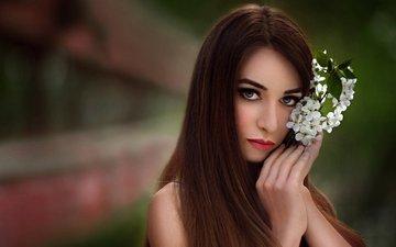 цветок, портрет, взгляд, цветком, ece