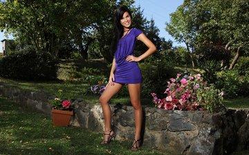 цветы, обои, лето, модель, ножки, nella miartusova, фиолетовое платье
