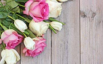 цветы, розы, букет, дерева, цветы, роз