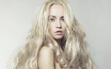 глаза, фон, взгляд, плечи, губы, лицо, длинные, блондинка. волосы