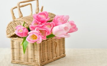 цветы, букет, корзина, тюльпаны, тульпаны, цветы, pink-tulips-flowers-bouquet.jpg pink