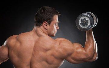 спина, плечи, мужчина, мужик, сзади, мышцы, бодибилдер, гантели, мускулистая