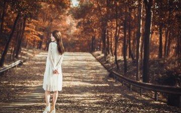 деревья, лес, девушка, настроение, парк, осень, сад, азиатка, женщин, азиат, nпортрет