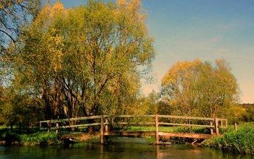 трава, деревья, мостик, мост, осень, водоем, пруд, опадают, осен