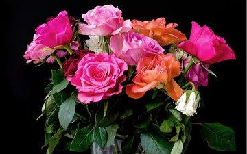 розы, букет, розовые, красивые, роз