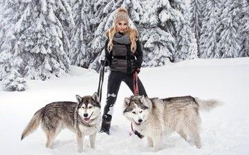 снег, лес, зима, девушка, поза, блондинка, хаски, порода, собаки, поводок