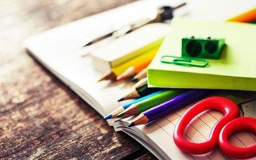 карандаши, цветные, ножницы, тетрадь, канцелярия, школьные принадлежности