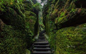 rocks, nature, ladder, bing