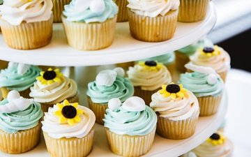 wedding, sweet, decoration, dessert, cupcakes