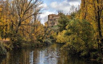 река, листья, листва, осень, дворец, опадают, осен, листья