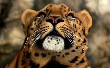 морда, арт, кошка, леопард, хищник