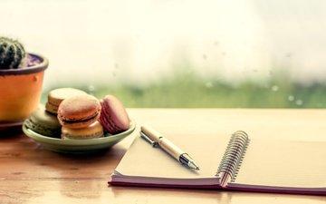 ручка, стол, кактус, печенье, десерт, натюрморт, макарун, миндальное