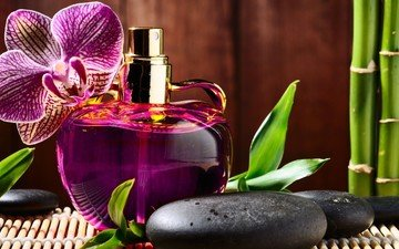 stones, flower, bamboo, orchid, aroma, perfume