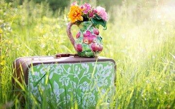 цветы, трава, лето, луг, путешествия, букет, яблоко, ваза, чемодан, натюрморт, сельская местность