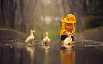 дети, птицы, дождь, игра, ребенок, мальчик, детство, гуси