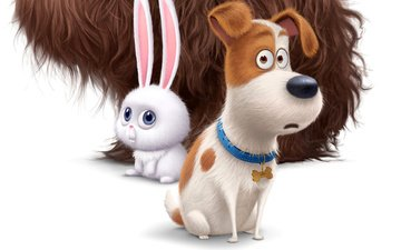 dog, cartoon, movie, hare, cute, 2016, the secret life of pets, the secret life of animals