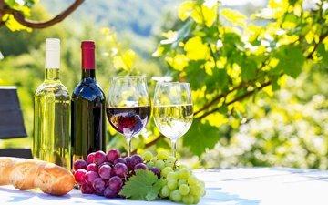 виноград, фрукты, вино, стекло, бутылка, вина, fruits, красное вино, белое вино, бутылек, cтекло