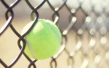 the fence, mesh, tennis, sport, the ball, ball