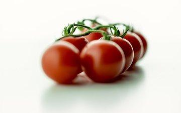 свежесть, красные, овощи, краcный, помидоры, боке, томаты, помидорами, помидоры черри, здоровое питание, овощной, черри, healthy food