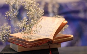 flowers, mood, books, plant, book, bokeh