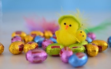 chick, colorful, easter, chocolate eggs, easter chick