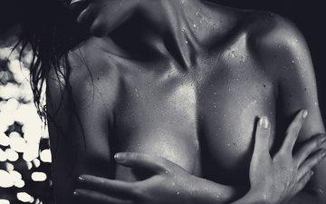 фото, чёрно-белое, модель, грудь, руки, шея, эротика