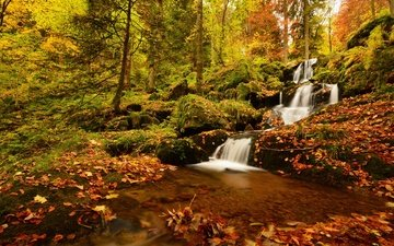 деревья, лес, листья, водопад, осень, франция, франци, нёвиллер-ла-рош, каскад де ла серва, neuviller-la-roche, vosges mountains