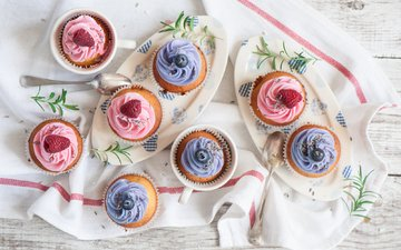 raspberry, sweets, blueberries, the sweetness, cakes, cupcakes, pastries, blueberry muffins