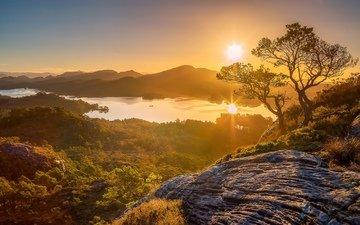деревья, горы, восход, утро, панорама, ландшафт