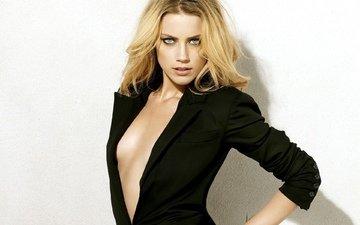 девушка, блондинка, взгляд, грудь, волосы, лицо, актриса, зеленые глаза, красотка, шея, эмбер херд, амбер херд