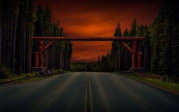 дорога, деревья, лес, арка, бревна