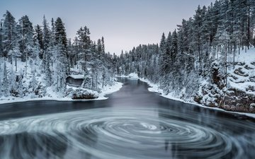 river, nature, forest, winter, finland, myllykoski, kuusamo