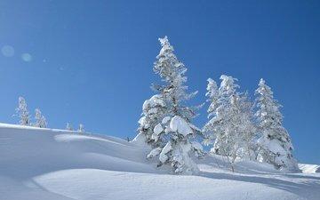 небо, деревья, снег, зима, япония, сугробы, японии, yatsugatake mountains