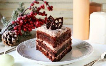 свечи, ягоды, шишка, шоколад, сладкое, выпечка, торт, десерт, бисквит, в шоколаде, кулич, cвечи, крем