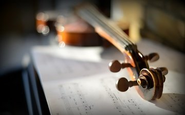 ноты, скрипка, музыка