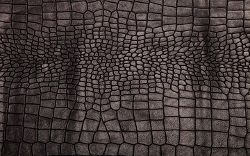 texture, background, black, leather, crocodile skin, crocodile leather