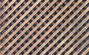 tree, design, wood, grid, grates