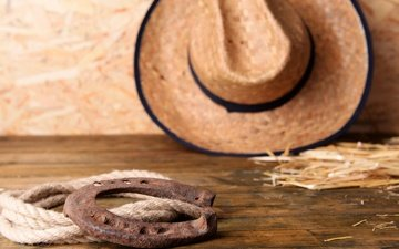 leather, rope, hat, horseshoe