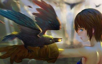 art, girl, raven