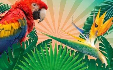 листья, фон, вектор, ветки, ветви, разноцветные, рендеринг, птица, перья, тропики, попугай, перышки, листья, ренденринг, птаха, multicolored