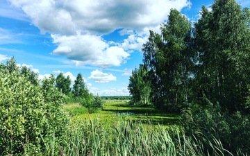природа, пейзаж, ландшафт, на природе, aristovart