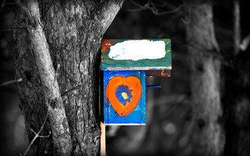 figure, nature, tree, color, house, birdhouse