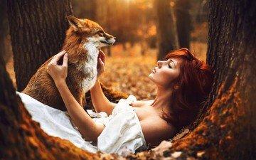 лес, животные, осень, девушки, лиса, рыжеволосая