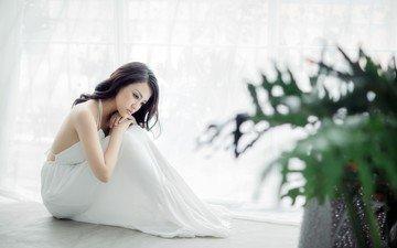 растения, девушка, брюнетка, модель, азиатка, белое платье, сидя, на полу