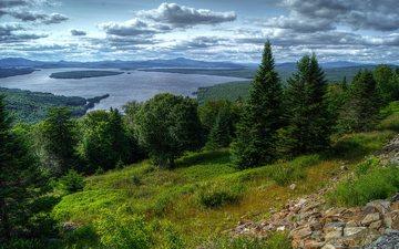 озеро, природа, лес, склон, лето, сша