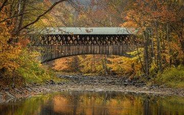 деревья, река, мост, осень, нью-йорк, бленхейм, state of new york