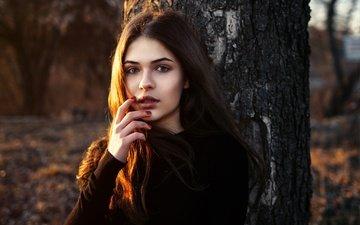 солнце, дерево, рука, девушка, портрет, брюнетка, взгляд, лицо, макияж, прическа, позирует, на природе, боке, kris, dmytro khlystun