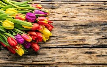 цветы, весна, букет, тюльпаны, дерева, красива, тульпаны, цветы, яркая, парное, весенние, красочная