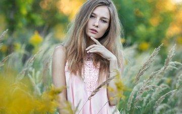 девушка, портрет, взгляд, колоски, лицо, вика, dmitrij butvilovskij, виктория манько