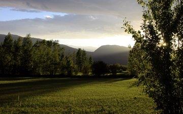 небо, деревья, горы, природа, закат, поле, неба, деревь, на природе